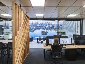 The Power of Plants: How a Green Office Improves Productivity